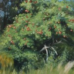 Apple Tree, 2016, oil on panel, 14x11in (35x28cm)