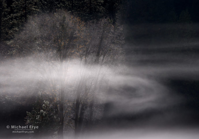 Swirling mist, El Capitan Meadow, Yosemite NP, CA, USA