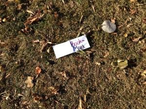 Book Mark in Grass 2