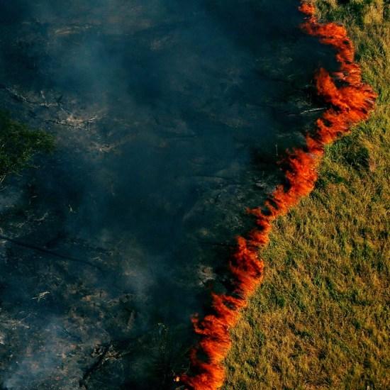 השריפות באמזונס