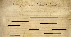 Redacted-Constitution
