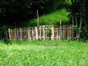 Is the Grass Greener On the Other Side of the Fence?