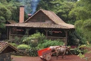 Costa Rican Rural Home