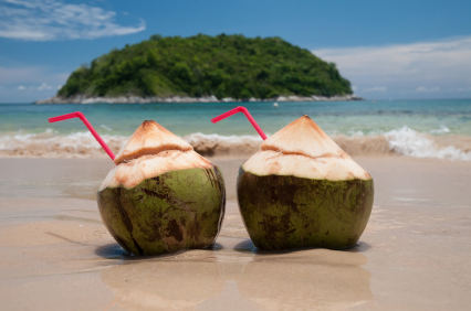 Green coconuts provide the young coconut water