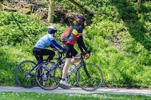 Bikes in Park