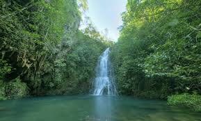Belize Waterfall