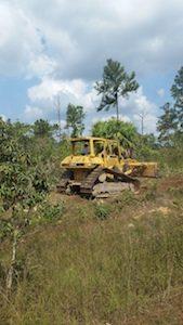 Bulldozer in Belize