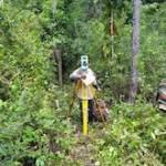 Development on Belize Eco Village.