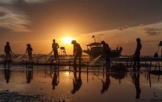 Dawn Fishing Sea Beach Sunset