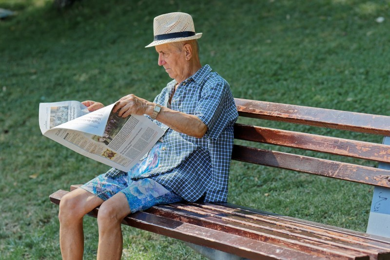 Old Man Elderly Bench Reading