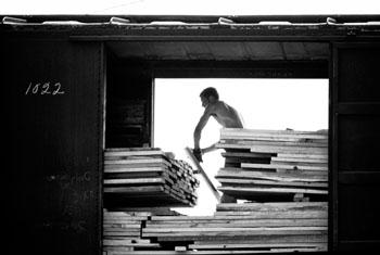 man-loading-lumber