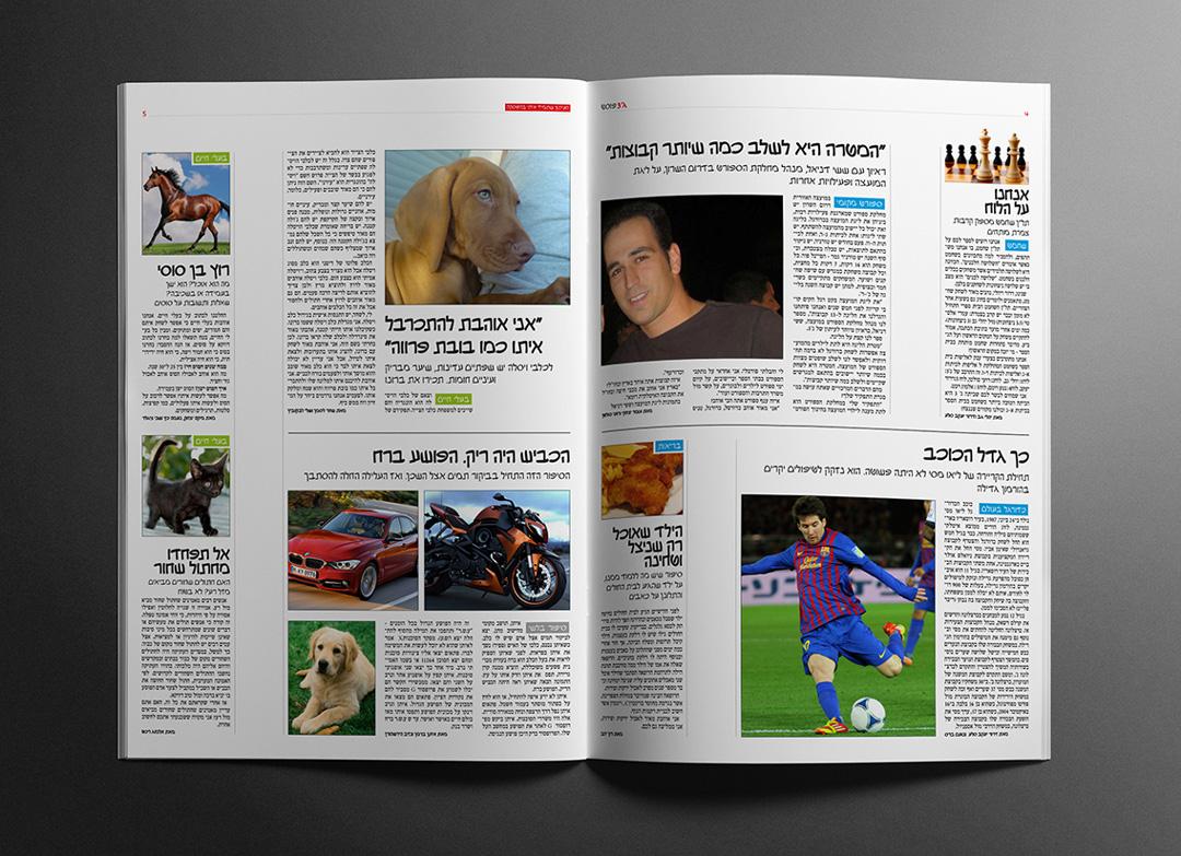 school newspaper by michalozdesign