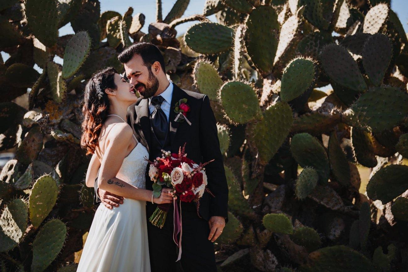 matrimonio cactus