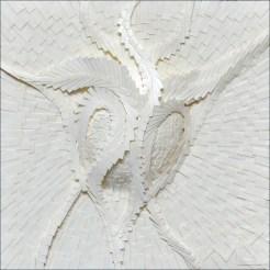 plancton 1