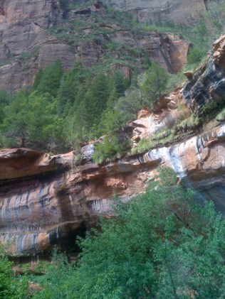 Zion NP 089
