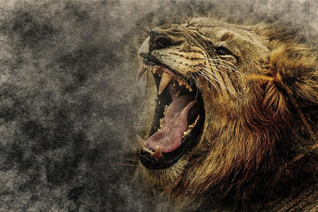 Come affrontare la rabbia