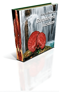 ebook-ganoderma
