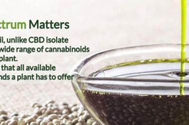 Cos'è il CBD, la Cannabis Light per uso terapeutico