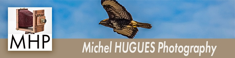 Michel HUGUES PHOTOGRAPHY - www.michelhugues.com