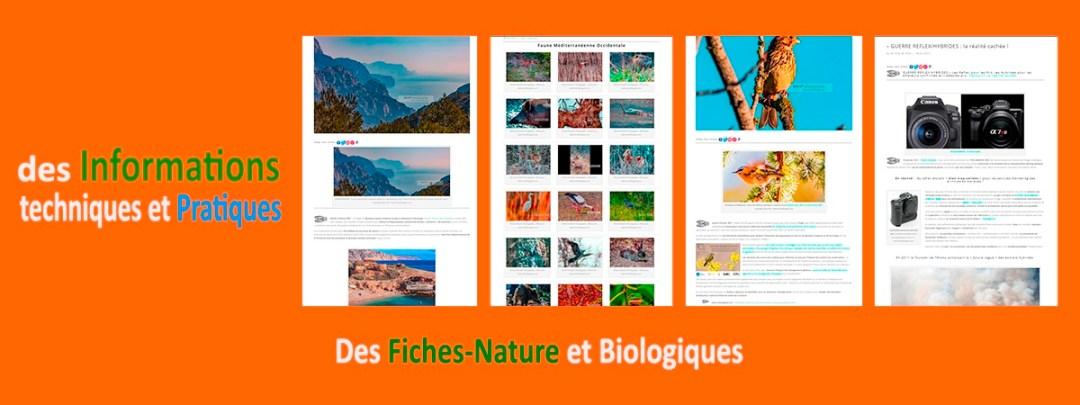 www.michelhugues.com