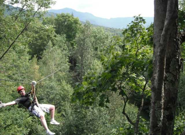 Ziplining: A Thrill and a Treat in the Canopy