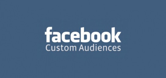 Non-Profits and Facebook Audiences