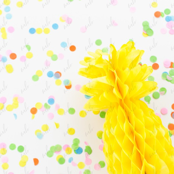Styled Stock Photography - Tropical Party Collection #10
