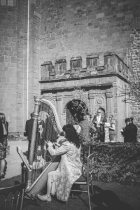 KenilworthCastle_harpist