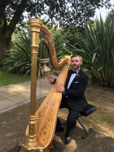 Groom plays harp during wedding reception at Moxhull Hall