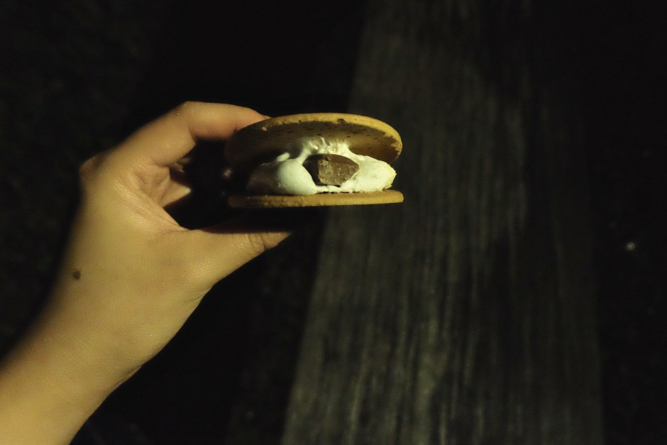 S'mores snack