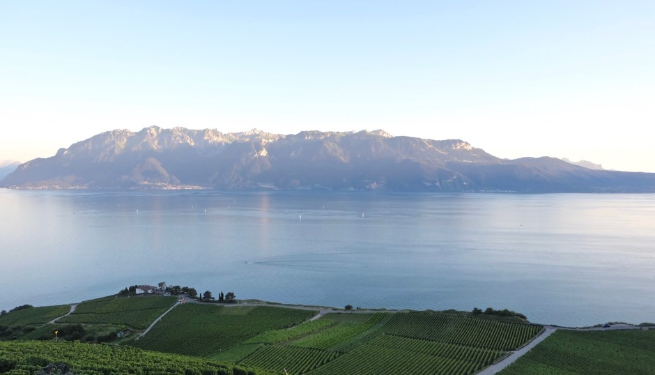 Lake Geneva View from Le Deck