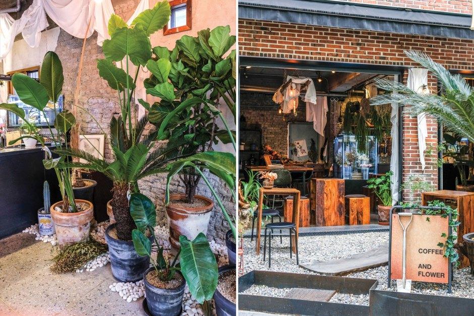 botanique cafe in seoul travel 2