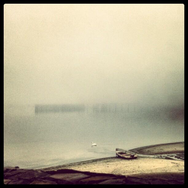 Fog #forttotten #NYC #Bayside #seascae