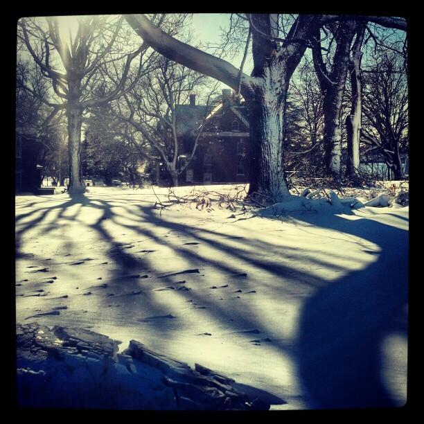 Snowy Day #photography #snow #newyork #pretty
