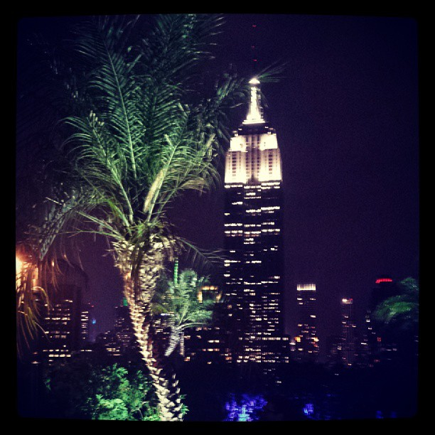 Empire State Building & Palm Tree #newyork #landmark