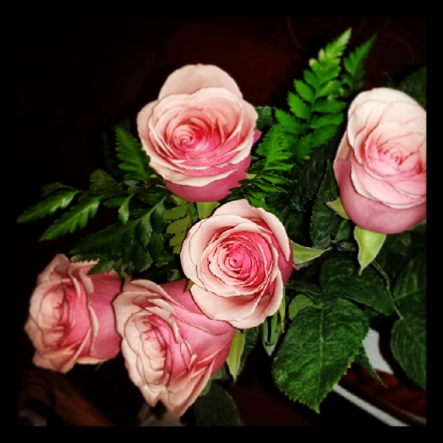 Roses to celebrate my exhibit !!! #cute #adorable #sosweet