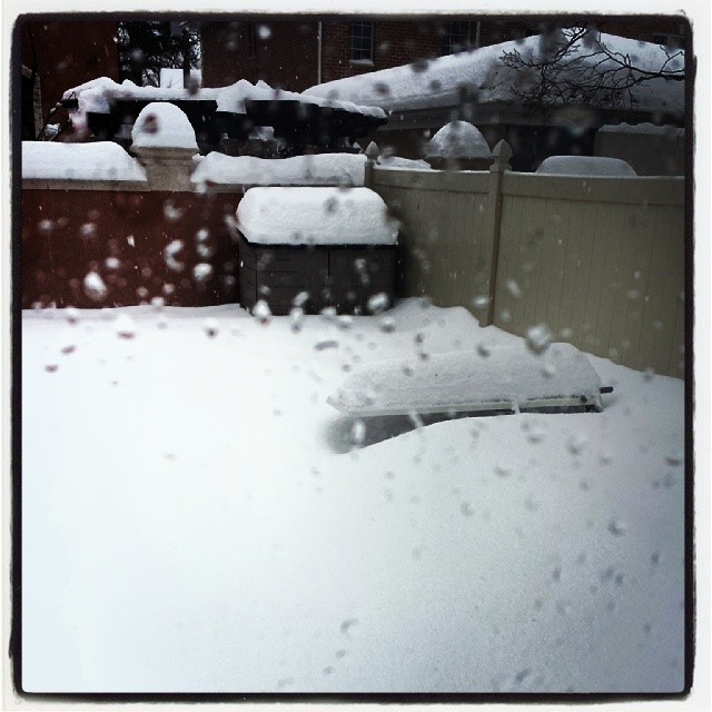 Cape Kawka in the snow #snow #polarvortex #summeriscoming #ihatewinter