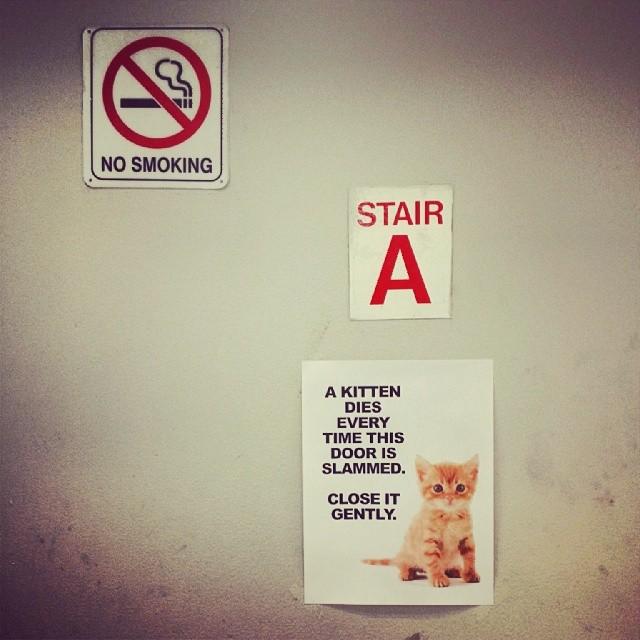 Don't Slam the Door #officehumor #office #funny