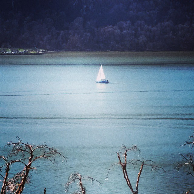 Sailboat on the Hudson #washingtonheights #newyork #sailing #sailingboat #serenity