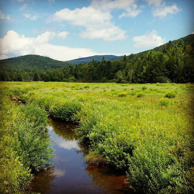 Green Mountains of #Vermont #weston #greenmountains #newengland