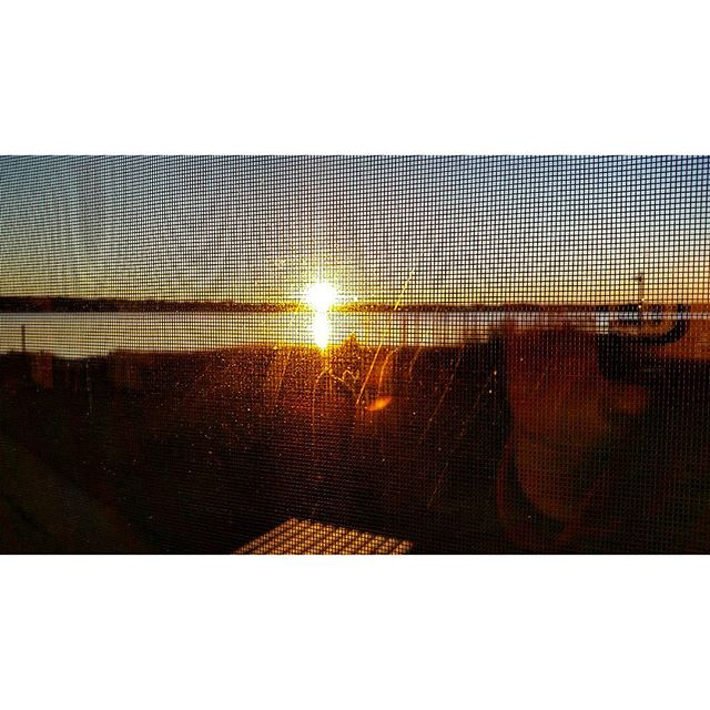 Sunrise through the screen #morninglight #hamptonbays #longisland #tianabay #sunlight