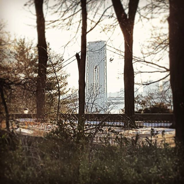 Through the trees #gwb #gwbridge #forttryonpark #newyork #washingtonheights