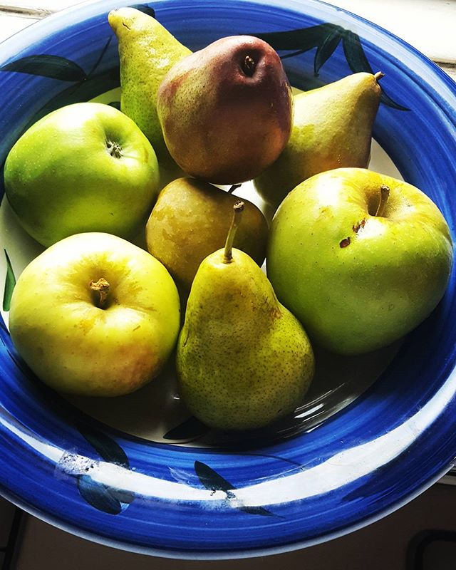 Autumn Fruits #farmersmarket #autumninny #newyorkphotographer #foodie #locavore #eatlocal #pears #apples #green #blue