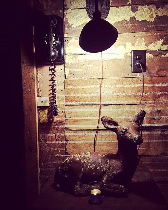 Oh Deer #catskills #ulstercounty #upstatenewyork #newyorkphotographer #woodstock #retro #farmhousestyle #countrychic