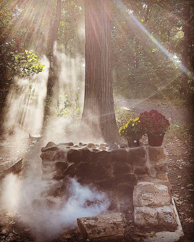 Sunday Morning In Autumn #firepit #queens #newyork #newyorkcity #alleypond #alleypondpark #douglastonny #autumn #trees #woods #sunlight #nature #fall #smoke #wood #glenoaks #natureinnewyork #sunlightthroughthetrees
