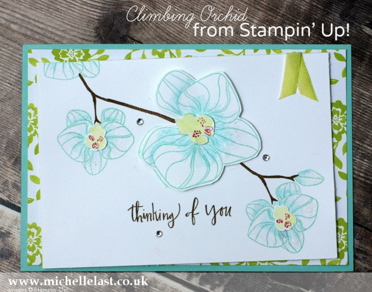 Climbing Orchid from Stampin Up
