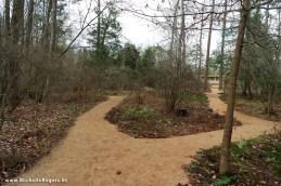 NC Botanical Garden - Michelle Rogers Healthy Living