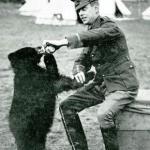 WWI Animals: Winnie the Pooh