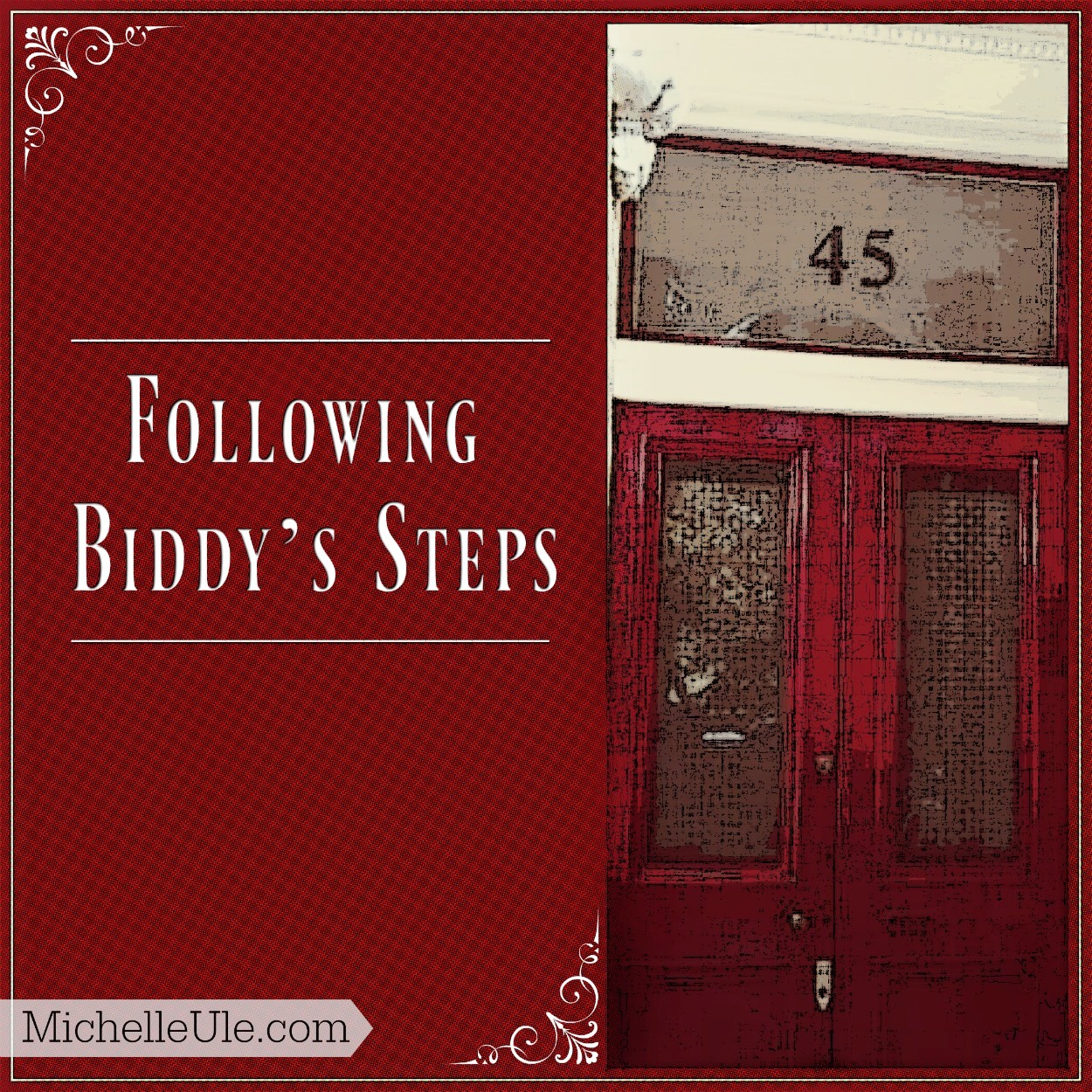 Following Biddy S Steps Michelle Ule Author