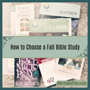 Bible Study, how to choose a Bible study, what Bible book should we study in the fall? God's will, teaching Scripture, Bible study choices.